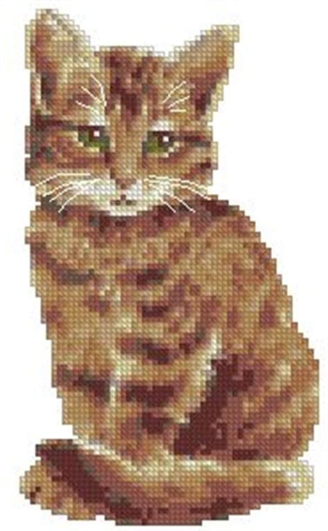 Advanced Embroidery Designs - Tabby Cat